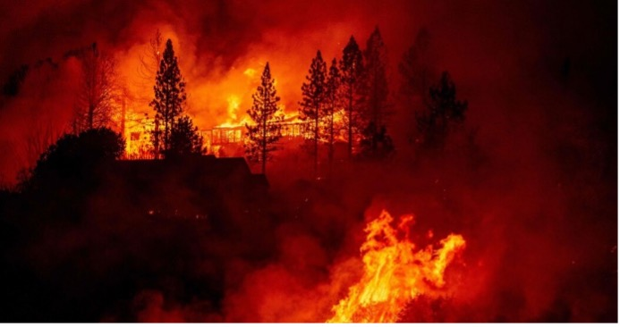 You are currently viewing Your Home Can Survive a Wildfire, Prepare Now
