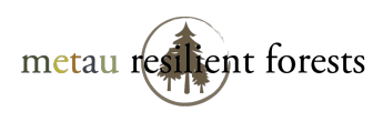 You are currently viewing Metau Resilient Forests, Leavenworth