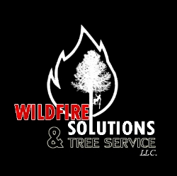 You are currently viewing Wildfire Solutions & Tree Service LLC