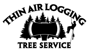 You are currently viewing Thin Air Logging & Tree Service